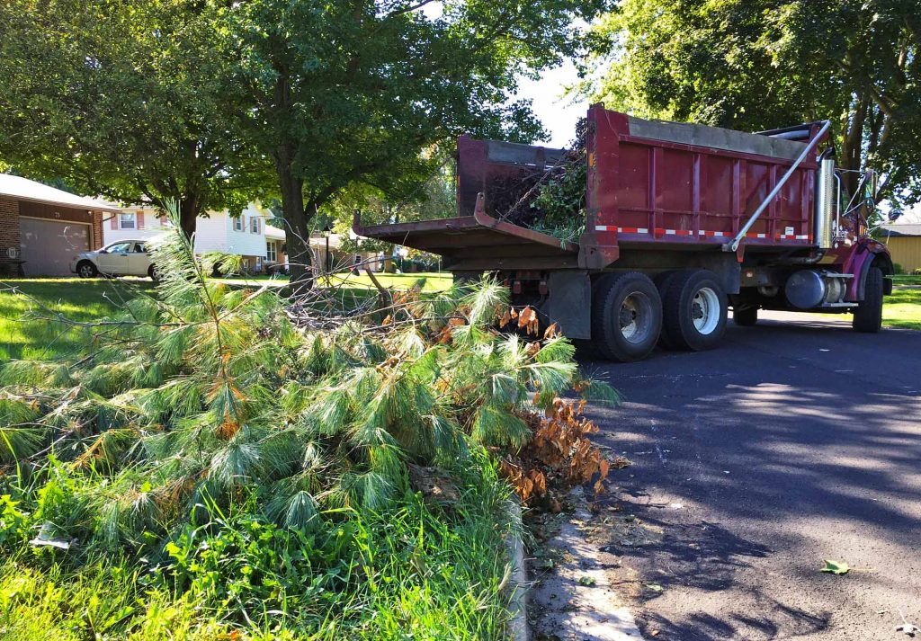 Yard waste and brush in the foreground. Red trailer in the background.