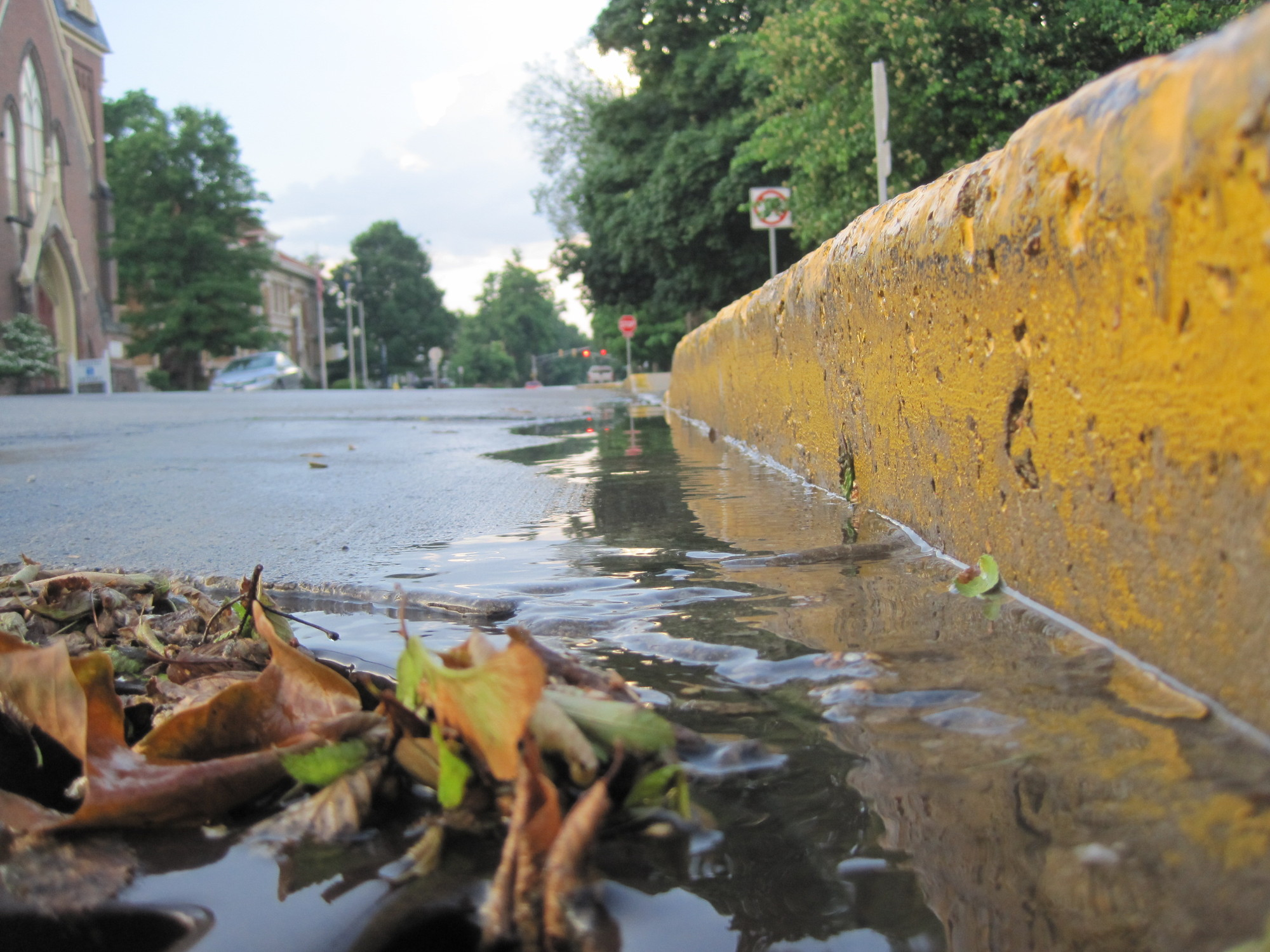 Summer rains flow into storm drains and out to our local waterways.