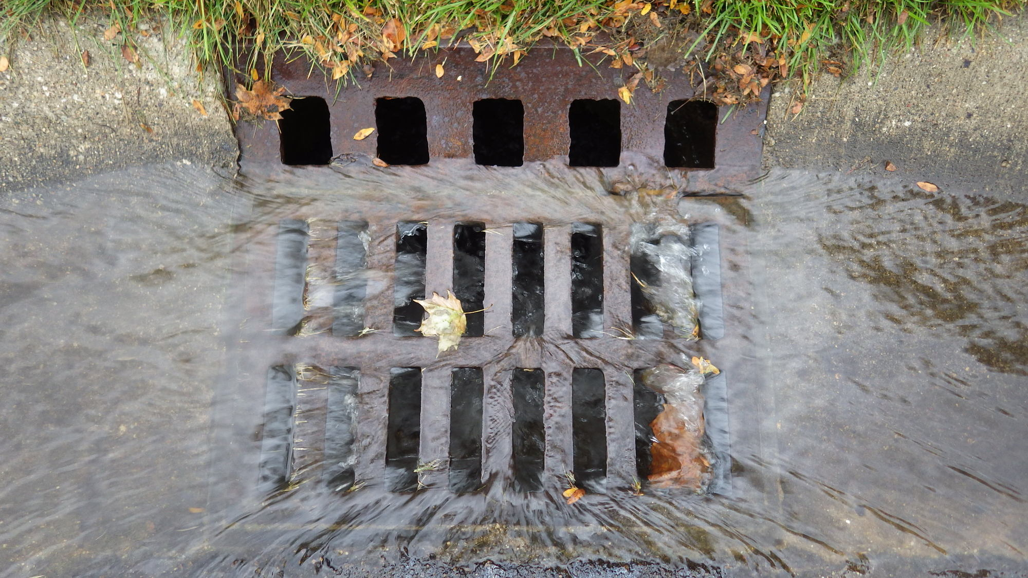 Stormwater runoff from a rainstorm running into a storm drain.